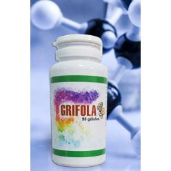Грифола - регенерация печени и снижение веса
